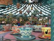 Mad Hatter's Tea Cups (DLP)