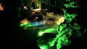 La Tanière du Dragon (DLP)