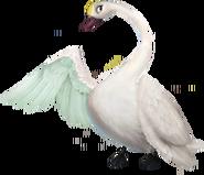 Odette-Swan-300x258