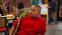 Eddie & Lizard