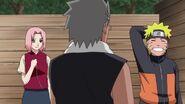 Naruto Shippuuden 181-368