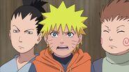 Naruto Shippuuden 176-330