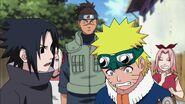 Naruto Shippuuden 176-253