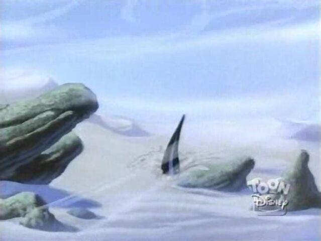 File:Sand Shark 44.jpg