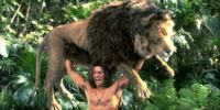 Lion (George of the Jungle)