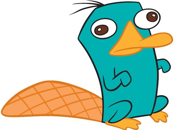 File:Perry the platypus.jpg
