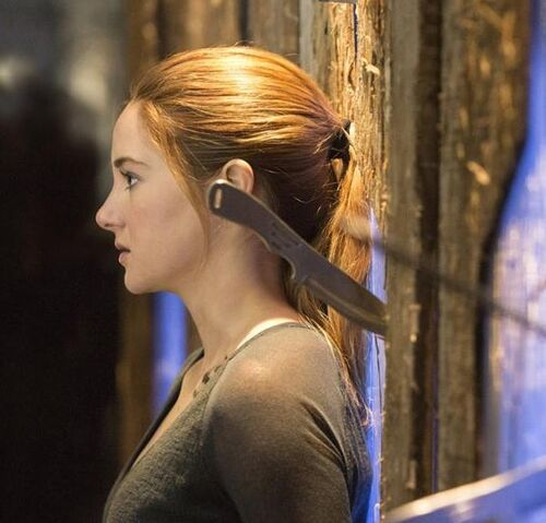 File:Tris prior.jpg