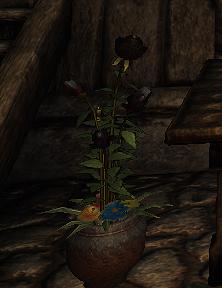 Black Rose (D2 herb)