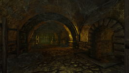 Henry and Eleanor's House interior cellar (D2 FoV location)