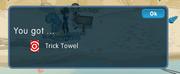 Dizzywood trick towel