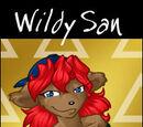 Wildy San