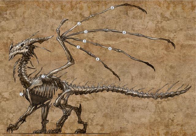 File:Dragon Skeleton.png