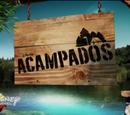Acampados