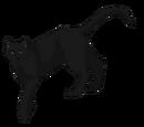 Sapphire (Agkistrodian)