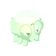 Bracarina Ghost
