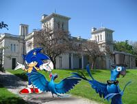 Blu showing Celestia Sonic and Jewel