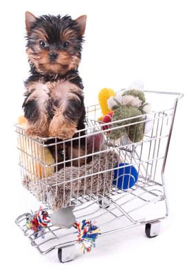 File:Dog toys.jpg