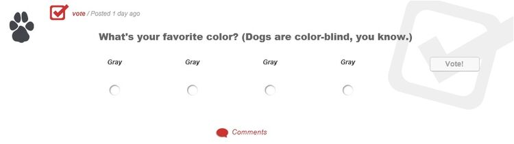 What's your favorite color (Dogs are color-blind, you know)