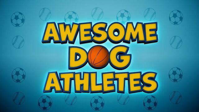 File:Awesome Dog Athletes.jpg