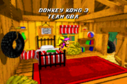 DK's Treehouse - Credits Rolling - Donkey Kong Country 3 (GBA)