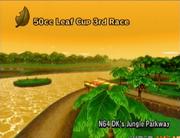 D K 's Jungle Parkway