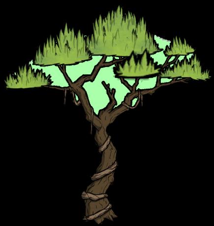 Tree/Jungle