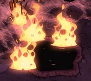 Plants on fire
