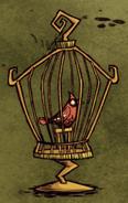 Redbird in bird cage