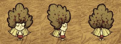Bush Hat Wendy