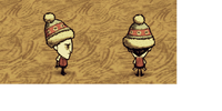 Chapéu de Inverno (Winter Hat)