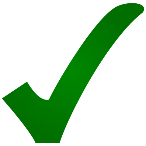 File:Yes check vote.png