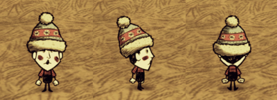 Winter Hat Wes