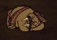 Walrus Sleep