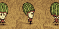 Fashion Melon