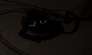 Shadow Splumonkey Asleep