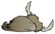 Dead Beefalo