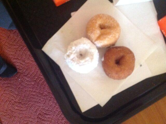 File:One cinnamon one sugar one powder sugar doughnut.jpeg