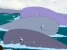 3 whale