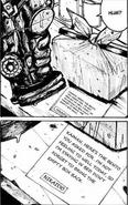 Nikaido's note