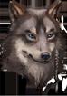 Helm wolf beastman illusion f