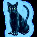 Pet ghostcat