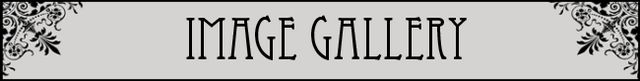 File:ImageGallery title.png