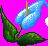 Blue arum