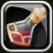 File:HP1icon.png