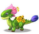 Dragon FLORAISON