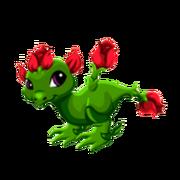 Rose Juvenile