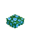 Blue Hedge