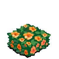 Flowering Hedge