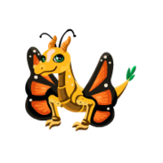 Butterfly Juvenile