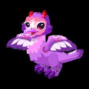 Lovebird Juvenile